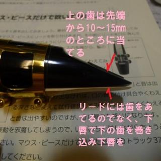 マウスピースを吹く歯を当てる位置.jpg